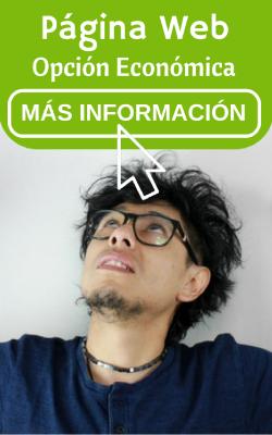 pagina web opcion economica 2017