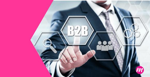 sitio web b2b